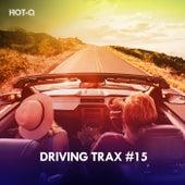 Driving Trax, Vol. 15 de Hot Q