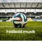 Fodbold musik - Danske fodboldsange -Landsholdssange by Various Artists