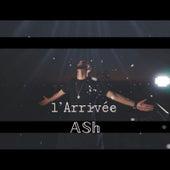 L`Arrivée de Ash