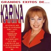 Los Grandes Exitos by Karina