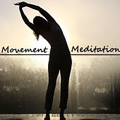 Movement Meditation by Various Artists