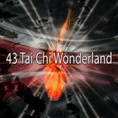 43 Tai Chi Wonderland de Zen Meditate