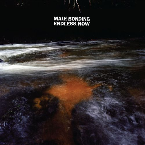 Endless Now by Male Bonding