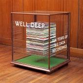 Well Deep: Ten Years Of Big Dada by Various Artists