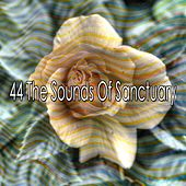 44 The Sounds of Sanctuary de Sleepy Night Music