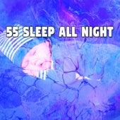 55 Sleep All Night de Sounds Of Nature