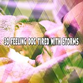 30 Feeling Dog Tired with Storms by Rain Sounds and White Noise