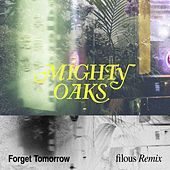 Forget Tomorrow (filous Remix) de Mighty Oaks