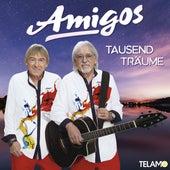Tausend Träume von Amigos