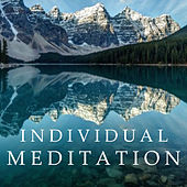 Individual Meditation by Various Artists