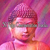 59 Yoga Concentration Tracks by Classical Study Music (1)