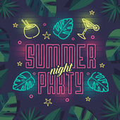 Summer Night Party by Various Artists