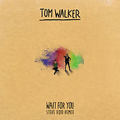 Wait for You (Steve Void Remix) by Tom Walker