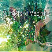 50 Tracks to Meditate by Classical Study Music (1)