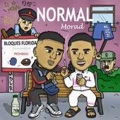 Normal by Morad