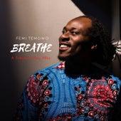 Breathe de Femi Temowo