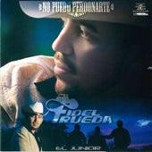 No Puedo Perdonarte de Fidel Rueda