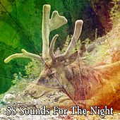 58 Sounds for the Night by Deep Sleep Music Academy