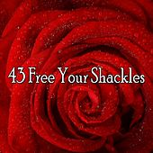 43 Free Your Shackles by Lullabies for Deep Meditation