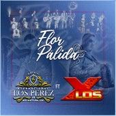 Flor Palida (feat. Los X) by Mariachi Internacional Los Perez