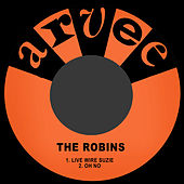 Live Wire Suzie by The Robins