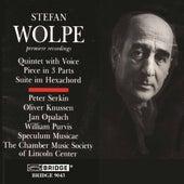 Music of Stefan Wolpe, Vol. 1 de Various Artists