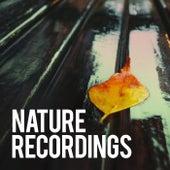 Nature Recordings de Sounds Of Nature