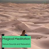 Magical Meditation - Nature Sounds And Relaxation de Serenity Calls
