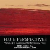 Flute Perspectives Volume 2 von Derek Jones