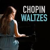 Chopin Waltzes by Ingrid Fliter