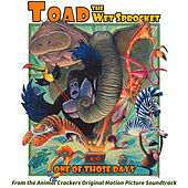 One of Those Days by Toad the Wet Sprocket