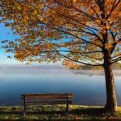 Autumn de NAV
