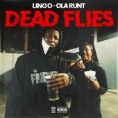 Dead Flies (feat. Ola Runt) de Lingo
