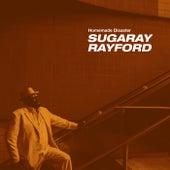 Homemade Disaster de Sugaray Rayford