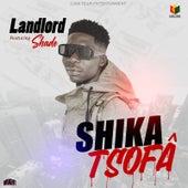 Shika Tsofa by Landlord