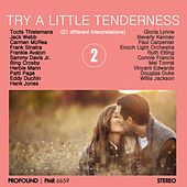 Try a Little Tenderness, Volume 2 de Various Artists