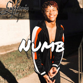 Numb by Euph0ria