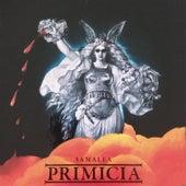 Primicia de Fernando Samalea