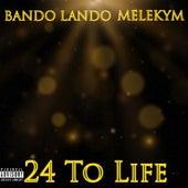 24 to Life von Bando Lando
