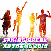 Spring Break Anthems 2019 van The Zamia Squad
