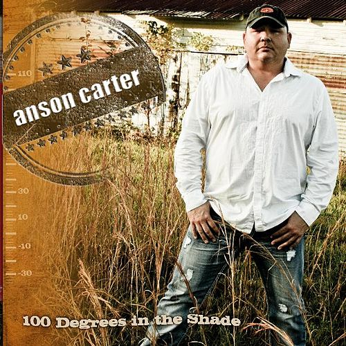100 Degrees In the Shade by Anson Carter