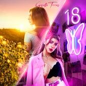 18 de Giselle Torres