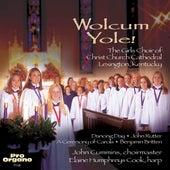 Wolcum Yole! von Various Artists