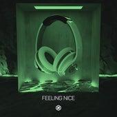 Feeling Nice (8D Audio) by 8D Tunes