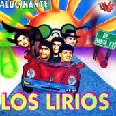 Alucinante von Los Lirios de Santa Fé