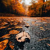 Chillout Rainy Days   Mindfulness, Wellness von Relaxing Music (1)