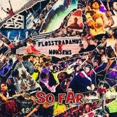 So Far by Flosstradamus
