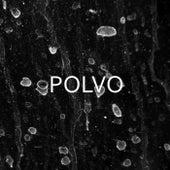 Lado B by Polvo