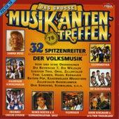 Das grosse Musikantentreffen / Folge 18 de Various Artists