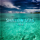 Shallow Seas Vol. 5 by Various Artists